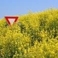 1/1 - Gniezno: prelekcja na temat GMO – fakty i mity