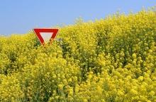 Gniezno: prelekcja na temat GMO – fakty i mity