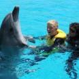 1/9 - Odmieniony wśród delfinów