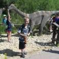 8/17 - Opole: co słychać u dinozaurów?