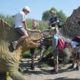 Opole: co słychać u dinozaurów?