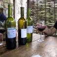 Kakheti to region we wschodniej Gruzji, znany z uprawy winorośli. Produkowane tu wina są cenione na całym świecie.