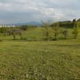 2/15 - EVS Macedonia: w Skopje wiosną