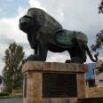 6/18 - EVS Macedonia: gdzie rośnie kiwi?