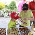 8/16 - Czechowice-Dziedzice: Piknik rodzinny z okazji Dni Trzeźwości