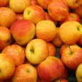 1/1 - Stargard Szczeciński: zapraszamy po odbiór jabłek!