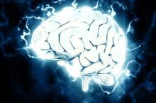 Szubin: Jak utrzymać mózg w młodzieńczej kondycji do późnej starości?